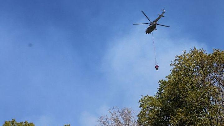 Виновники лесного пожара в Туапсинском районе возместят расходы на его тушение