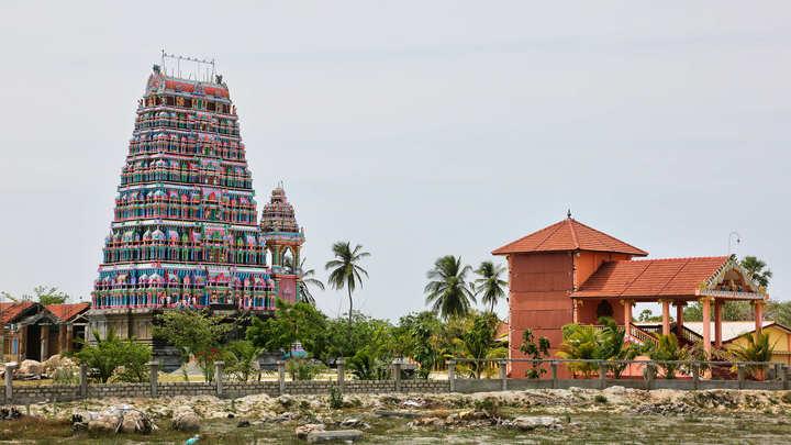 Россельхознадзор сохранит усиленный контроль над чаем из Шри-Ланки
