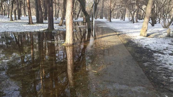 Глава Екатеринбурга объяснил, почему затопило Зеленую рощу