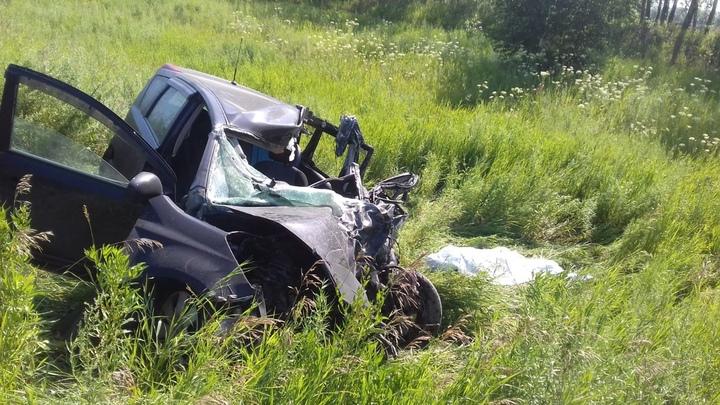 Мужчина погиб в ДТП с фурой на трассе в Новосибирской области