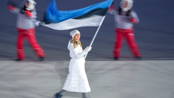 Раскошелились на русофобию: стена, отделяющая Эстонию от России, подорожала в 2,5 раза