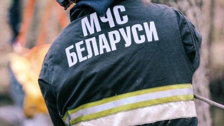 Житель Бобруйска вызвал спасателей и заполучил наказание