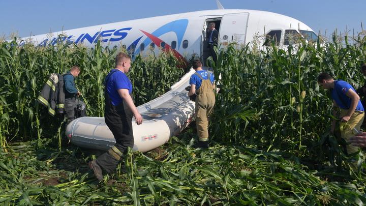 Приземление в кукурузу - случайность: Пилот Аэрофлота из-за рекламы Конституции устроил скандал