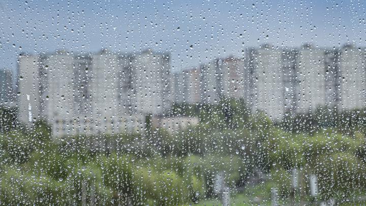 Аномальная жара в Санкт-Петербурге сменится громом и молниями