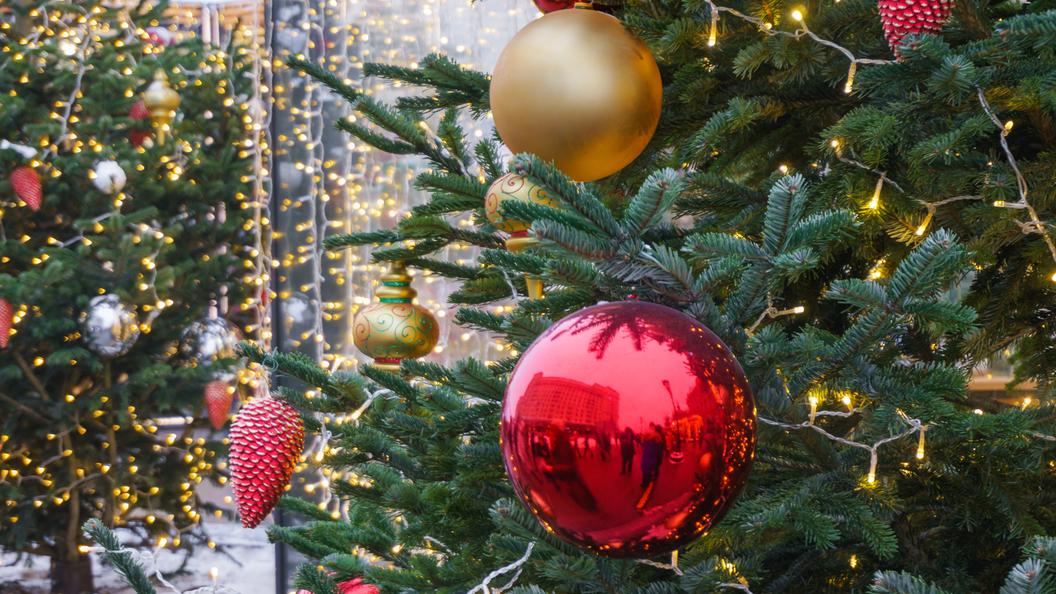 Навокзалах столицы 7декабря начнут устанавливать новогодние елки