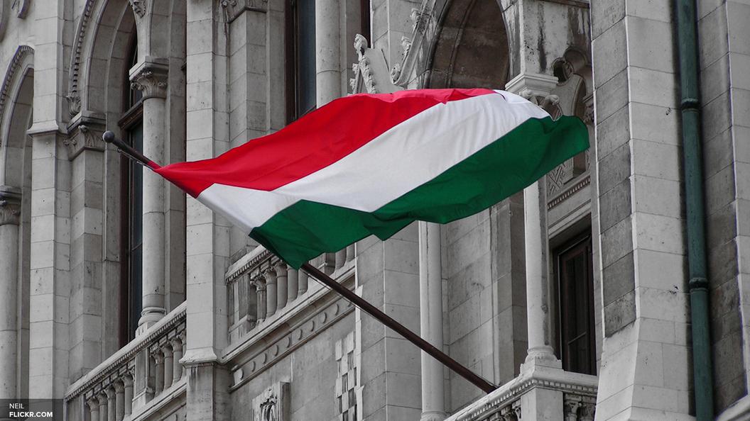 Чеченец из России заставил вандала извиниться за осквернение памятника в Будапеште