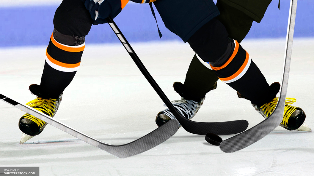 Судья НХЛ требует 10 млн долларов с хоккеиста за силовой прием