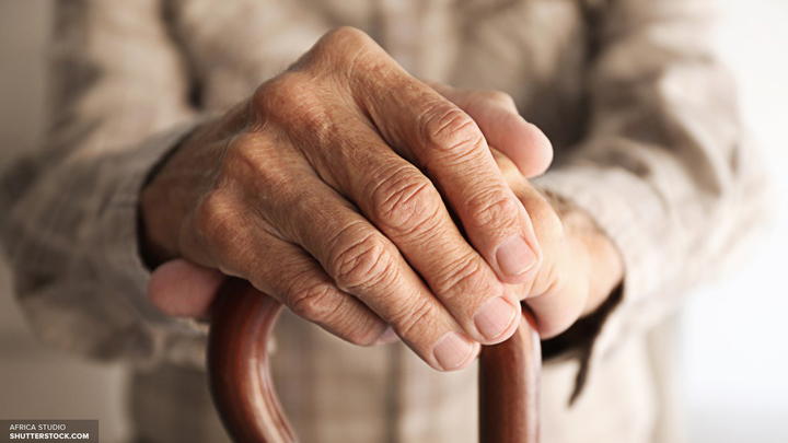 На совещании с Путиным проигнорировали идею ЦСР о повышении пенсионного возраста