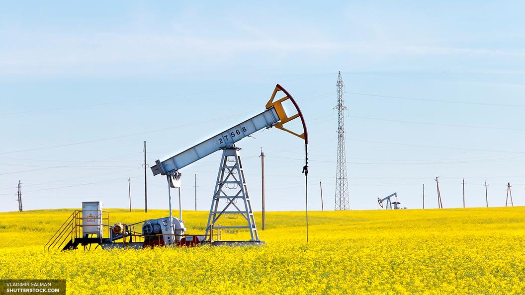 Заработок ОПЕК отэкспорта нефти снизился доминимума за11 лет