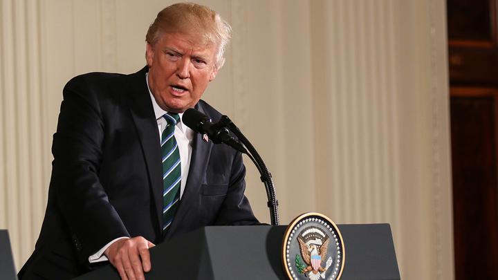 Американское Болото бунтует, Трамп наносит ответный удар