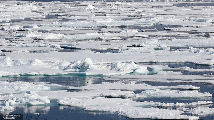 Рогозин мечтает сделать Арктику комфортной и завлечь переселенцев
