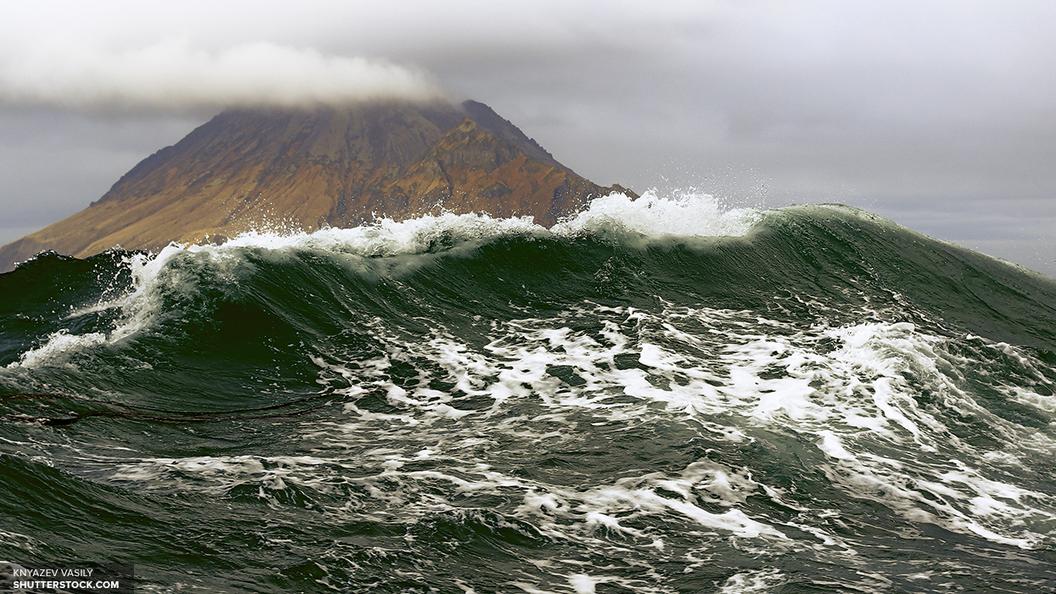 СМИ сообщили об одобренных русско-японских проектах на Курильских островах