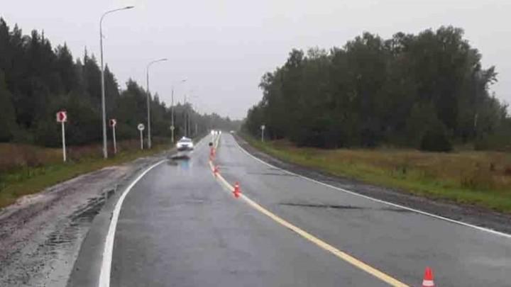 В Ивановской области на нижегородской трассе насмерть сбит пешеход