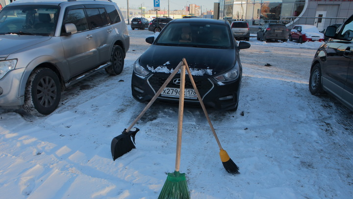 Латентная зима: середина ноября в Санкт-Петербурге буде прохладной