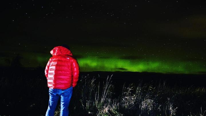 Жители Санкт-Петербурга и Ленинградской области делятся кадрами северного сияния