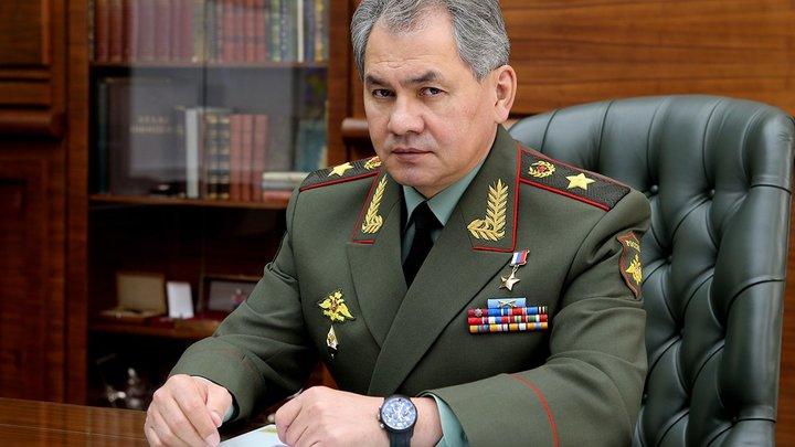 Шойгу готов ответить на попытки США выдавить Россию из Арктики - СМИ