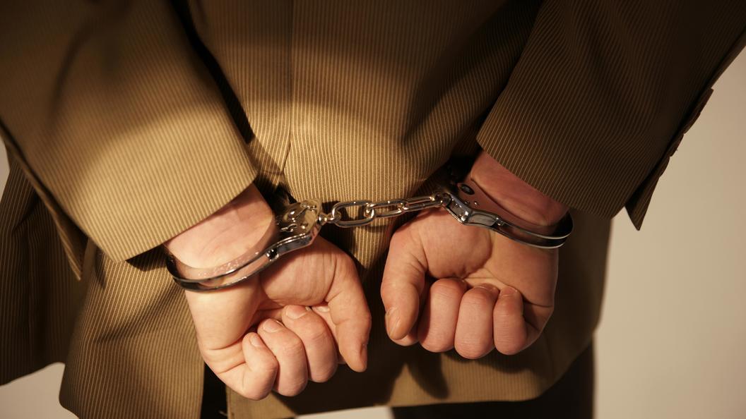 Милиция  задержала организатора нападения нафельдъегерей вПодмосковье