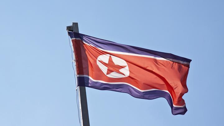 Звезда северокорейского ТВ пропала с горизонта: Знаменитая «рыдающая диктор в розовом» не выходит в эфир