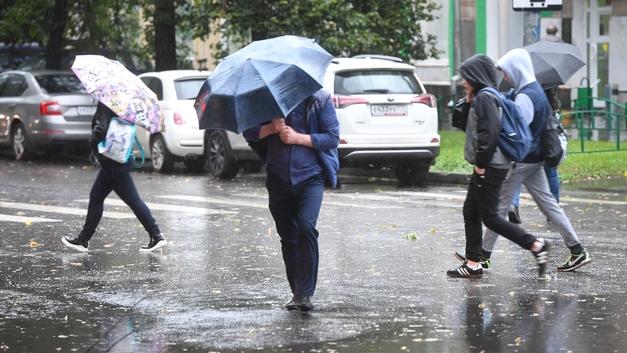 «Желтый» уровень опасности: Москвичей предупредили о надвигающемся шторме