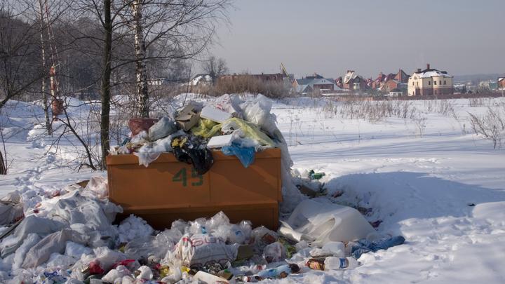 Утилизация ТБО оказалась самой острой проблемой экологии России