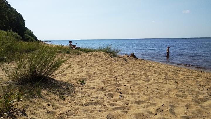 Где можно купаться и температура воды на пляжах Коломны
