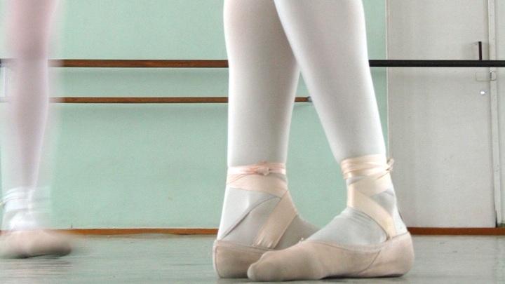 Балерины устроили шоу на зебре, парализовав транспортный поток