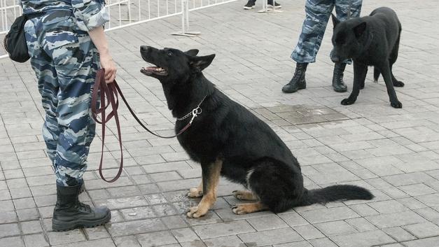 На поиски охранника, ограбившего свой банк на 10 млн рублей, понадобилась почти неделя