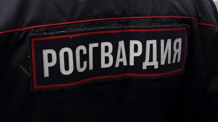 Не страшны никакие горы: В Подмосковье презентовали вездеход Чаборз-М3 для российских спецподразделений