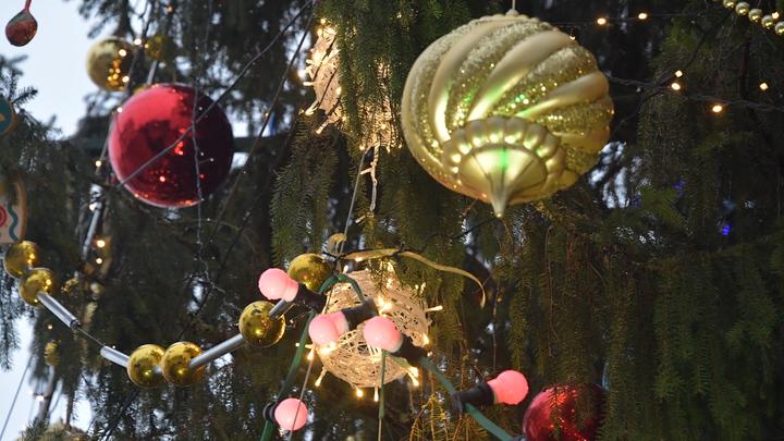 В Уфе Новый год хотят праздновать с елью почти за 19 млн