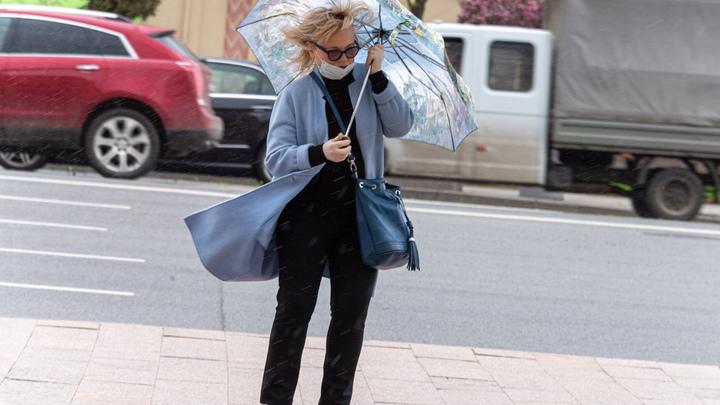 Во Владимирской области 6 ноября ожидают штормовой ветер и ливни
