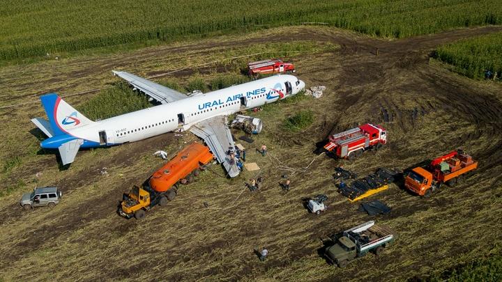 Угробили сверхдорогущий лайнер абсолютно безумными действиями: Лётчик-испытатель обрушился на пилотов-героев А321
