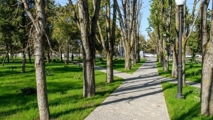 Краснодарцы выбрали зеленые зоны для благоустройства в 2022 году