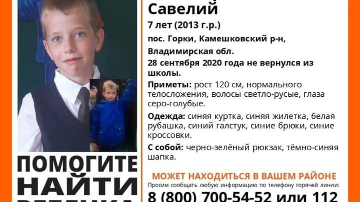 Владимирский отряд Лиза Алерт продолжает поиски Савелия Роговцева