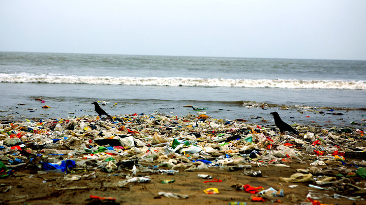 Земля погружается в пластиковый океан