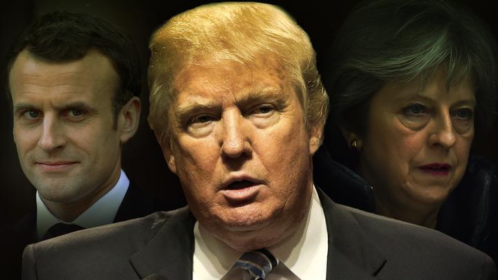 Германия, Италия, Турция не подписались под авантюру Трампа в Сирии