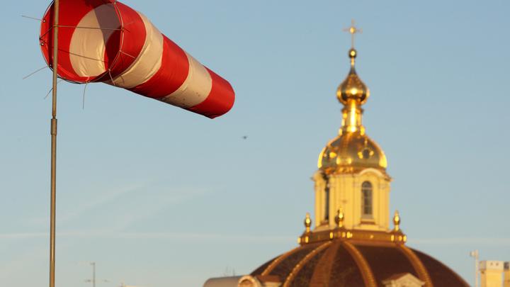 МЧС предупредило о сильном ветре в Санкт-Петербурге