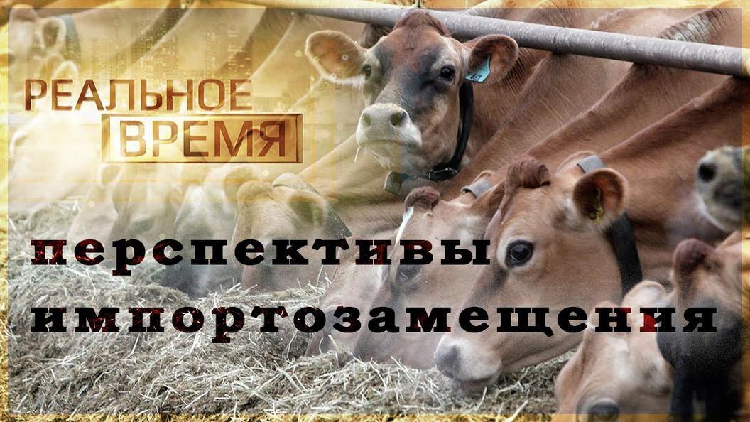 Российскую экономику может спасти сельское хозяйство [Реальное время]