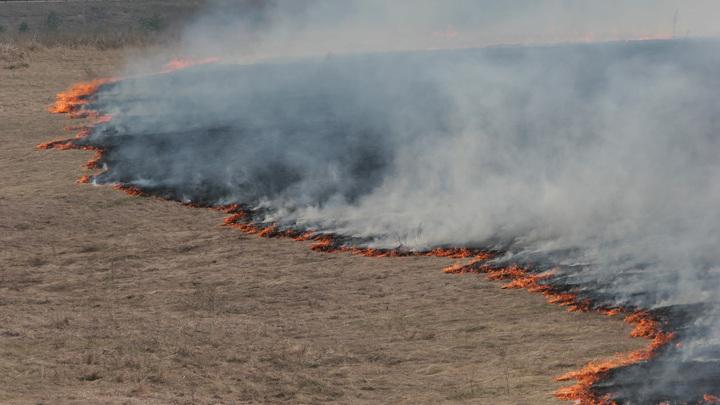 В Свердловской области горит сухая трава