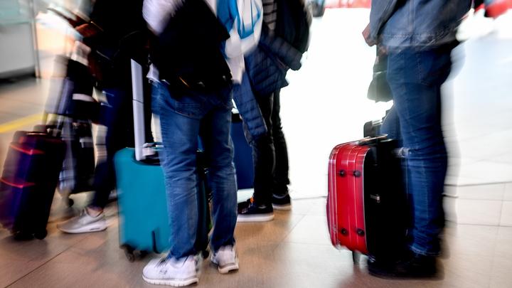 Проблему с горами багажа в Шереметьеве решили с помощью метро