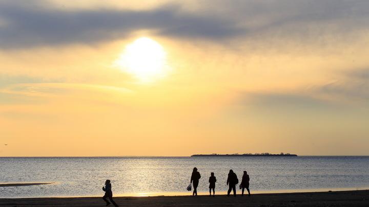 Эксперт: состояние акватории Финского залива резко ухудшилось