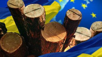 Евросоюз вырубает леса на Украине