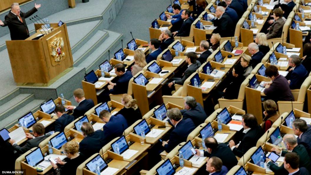 Блогер Саша Спилберг выступила в государственной думе