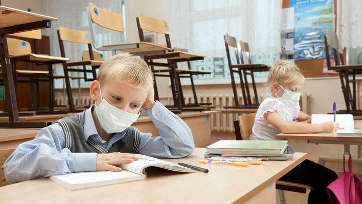 Школы Санкт-Петербурга опубликовали форму заявления на перевод учеников на «дистанционку»