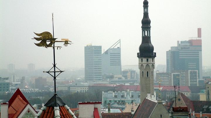 Мы не пугаем, мы злим Россию: Экс-премьер Эстонии призвал власти прекратить провокации