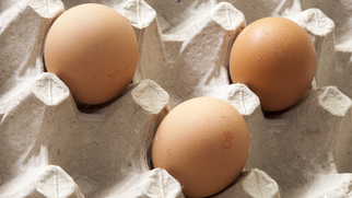 заработок на куриных яйцах в интернете