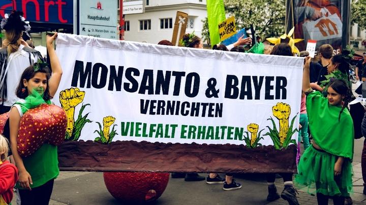 Садовник и его убийца: У Monsanto начинаются крупные неприятности