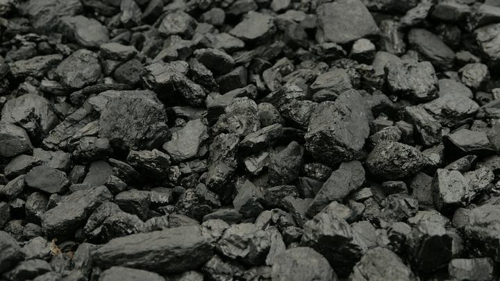 Кто бы только мог такое предвидеть!: Гаспарян о полной зависимости Польши от угля из России