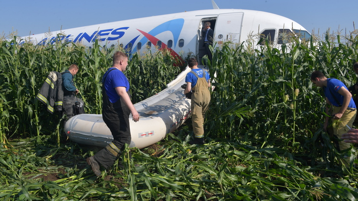 Снова в небо: Посадивший в кукурузу А321 пилот-герой возвращается к работе