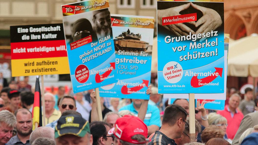 Партия друзей России стала третьей по популярности перед выборами в Германии