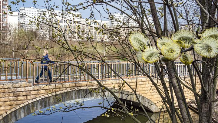 Синоптик раскрыл прогноз на вторую часть мая в Москве: Воздаст за наши страдания